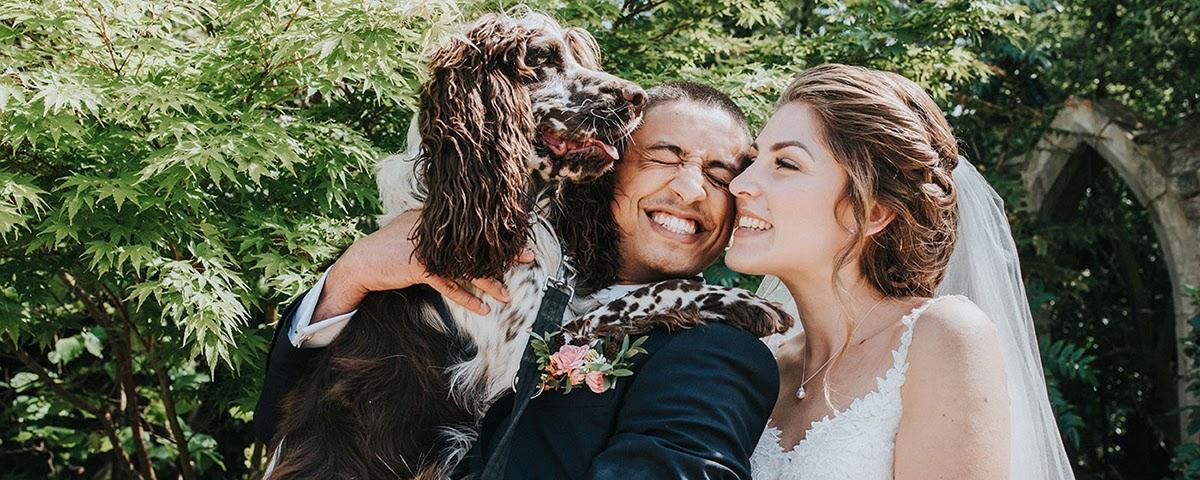 7 dicas para organizar um casamento pet friendly